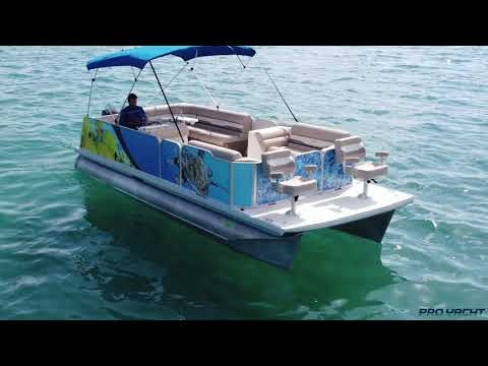Fiesta Pontoon
